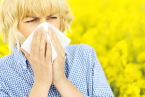 A springtime visit to your chiropractor could help with allergies